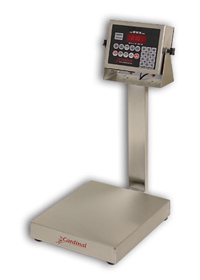 Detecto EB-210 Series Stainless Steel Bench Scales