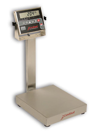 Detecto EB-204 Stainless Steel Bench Scales